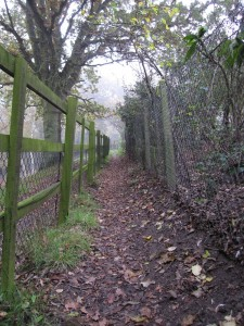 Mucky paths