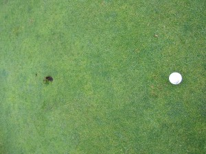 Proof for a particular friend of mine that I can actually hit a green. I did four times, in regulation. Kinda of a big deal for me.